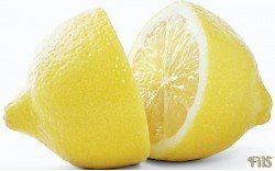 FILS citrom